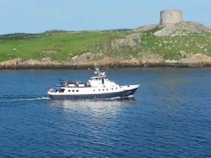 St Bridget at Dalkey Island
